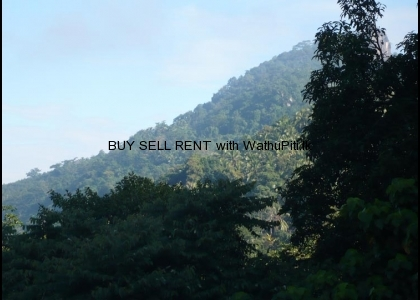 Commercial Building & Land for Sale in Mawanella